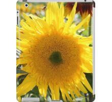 Sunflower 19 iPad Case/Skin