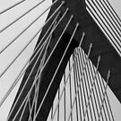 Zakim 3 by marybedy