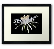 From the Night Space Framed Print