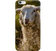 Funny Sheep iPhone Case/Skin