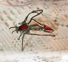 Goggo/Insect range - Paper Wasp by Maree  Clarkson