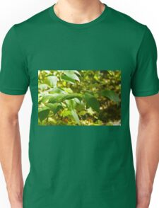 Selective focus on the branch of a tree closeup Unisex T-Shirt