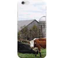 Country Cows Say Moo iPhone Case/Skin