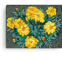 Yellow marigolds  Canvas Print