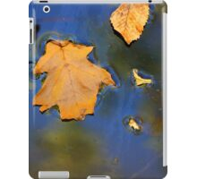 Wetland Fall 11 iPad Case/Skin