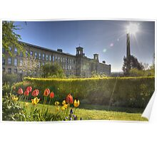 Tulips at Salts Mill Poster