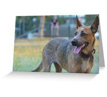 Red dog Greeting Card