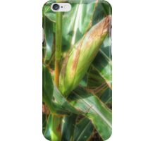 Corn Crop iPhone Case/Skin