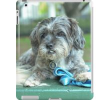 Cute pup iPad Case/Skin