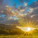 Franschhoek Winelands, South Africa by Neville Jones