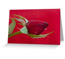 Red on Red 2 Greeting Card