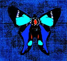Butterfly Winter Autumn Blue by Saundra Myles
