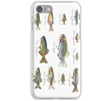 Twelve Danios iPhone Case/Skin