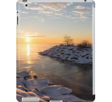 Brilliant, Bright and Cold - a Winter Morning on the Lake Shore iPad Case/Skin