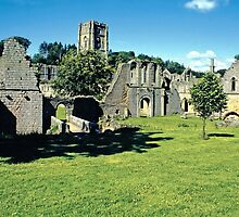 Fountains Abbey2 by Priscilla Turner