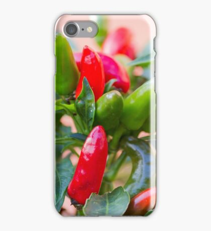 red chili iPhone Case/Skin