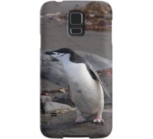 Chinstrap penguin Samsung Galaxy Case/Skin