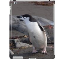 Chinstrap penguin iPad Case/Skin