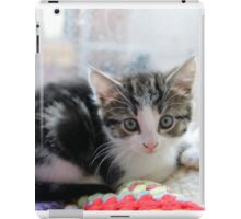 How Much is the Kitty in the Window iPad Case/Skin