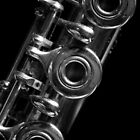 Flute b&w 9856 by João Castro