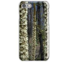 Xanthorrhoea Dreaming iPhone Case/Skin
