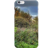 The Devon Way iPhone Case/Skin