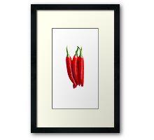 Chili Pepper Framed Print