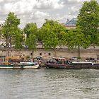 On the Seine River, Paris, France by Elaine Teague