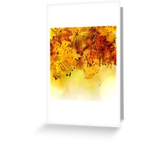 Fall maple leaves 4 Greeting Card