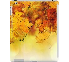 Fall maple leaves 4 iPad Case/Skin