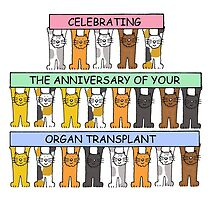 Cats celebrating the anniversary of your organ transplant. by KateTaylor