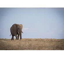 Heart of Africa Photographic Print