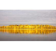 Lemon lanterns Photographic Print