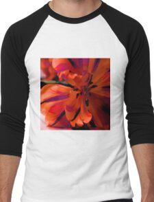 Flamenco Men's Baseball ¾ T-Shirt