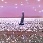 Digital Yacht by Sue Gurney