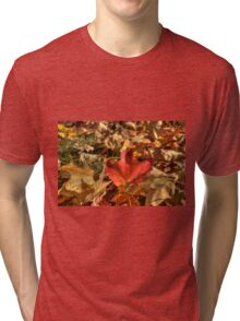 Fallen Leaves V Tri-blend T-Shirt