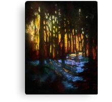 Winter sunset in a snowy forest Canvas Print