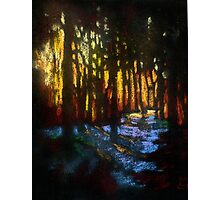 Winter sunset in a snowy forest Photographic Print
