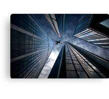 Base jump Canvas Print