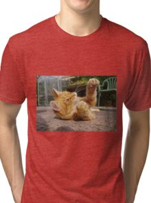Ginger cat playing on patio Tri-blend T-Shirt