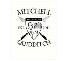 Mitchell Quidditch Design 2 Art Print