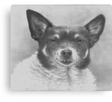 A Dog Named Boo Canvas Print