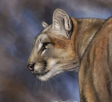 Cougar by Gaia Sorrentino