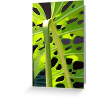Swiss Leaf - Macro Photography Greeting Card