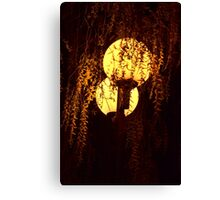 Shining Willow Canvas Print