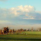 Netherleigh in Fog by julie anne  grattan