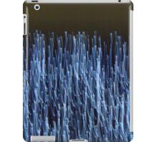 BROOKLYN BRIDGE (Dreams Of Gotham) iPad Case/Skin