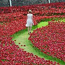 Maiden in the Poppies  by Sparowsong