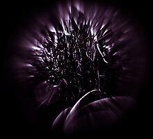 Purple Portal by Mario Morales Rubi