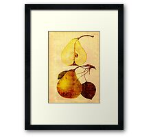 Copper Pear Framed Print